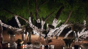 Image of Christmas Light Event Rentals for Wedding Receptions